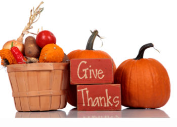 Happy Thanksgiving from Garden Harvest Supply