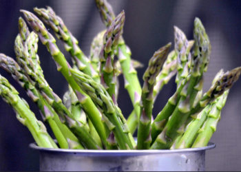 learn everything about asparagus