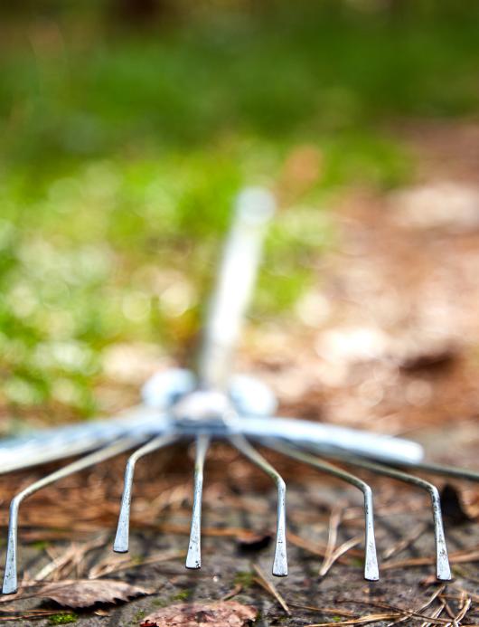 rake for preparing fall garden for spring