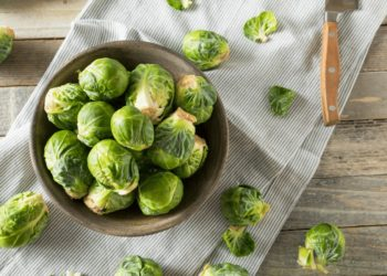 brussels sprouts planting tips